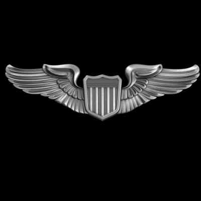 000-3d-model-Pilot_badge_01.jpeg
