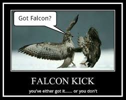 falconkick.jpg