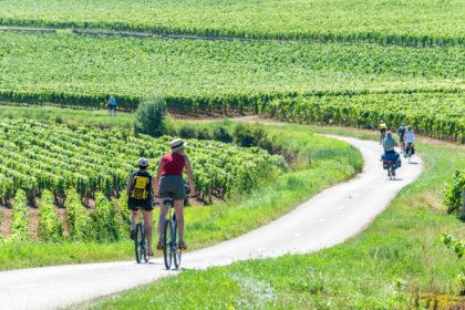 velo-canal-de-bourgogne-420x280.jpg
