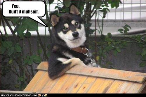 built-construction-dog-house-handy-man-whatbreed-work-2576043776.jpg