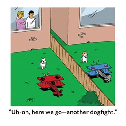 cartoon-naf-uh-oh-here-we-go-another-dogfight.jpg