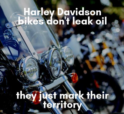 harley-bikes-leaking-meme.jpg